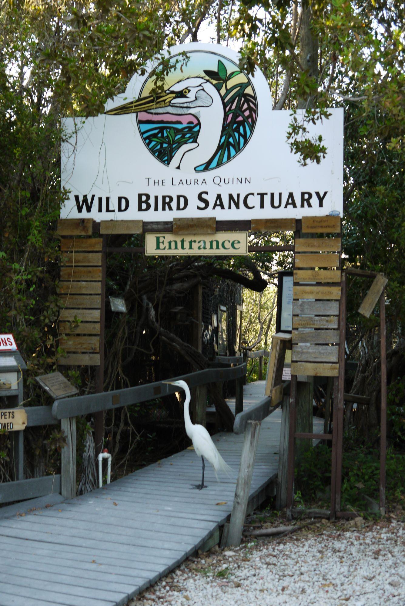 Das Wild Bird Sanctuary in Tavernier, FL 33070, Florida Keys